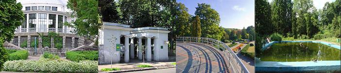 Ботанический сад им. акад. А.В. Фомина, фотограф Артем Маковский